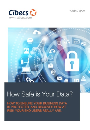 White paper Covers - How safe is your data.jpg